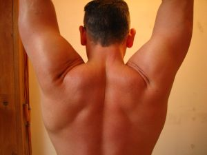 Creatine_muscles