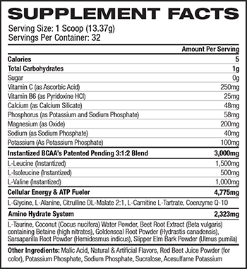 MusclePharm Hybrid Series Amino1 Supplement Facts