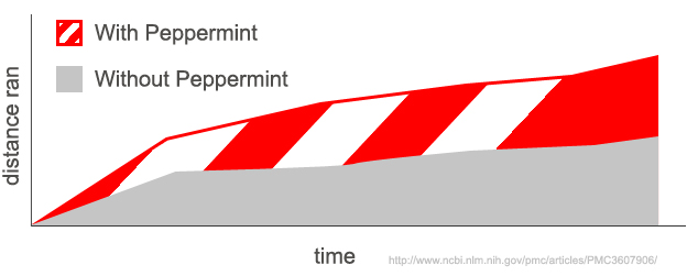 The effects of peppermint on exercise performance